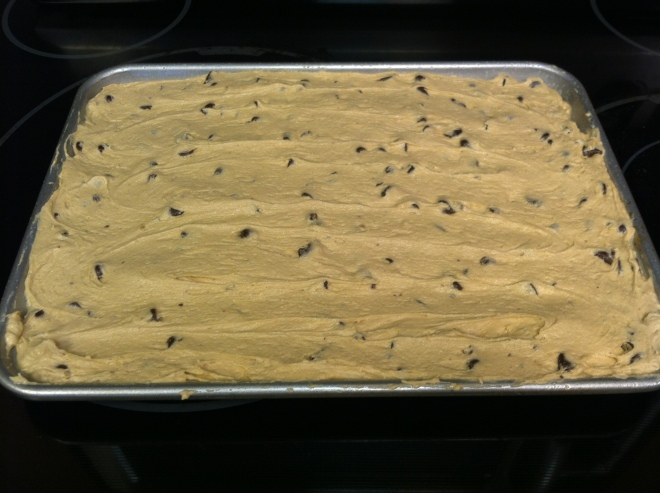 Peanut Butter Chocolate Chip Cake Bars