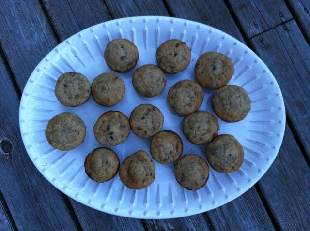 Moist Mini Chocolate Chip Banana Muffins 013
